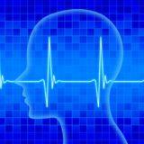 【実証済み】クロスステッチで脳活動が8.5倍に!ユザワヤ×川島博士監修クロスステッチキットが脳トレになる三つの理由